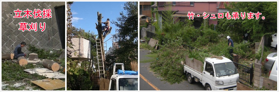 庭木伐採、立木の枝落し、草刈りの貴乃園 / 即日・当日